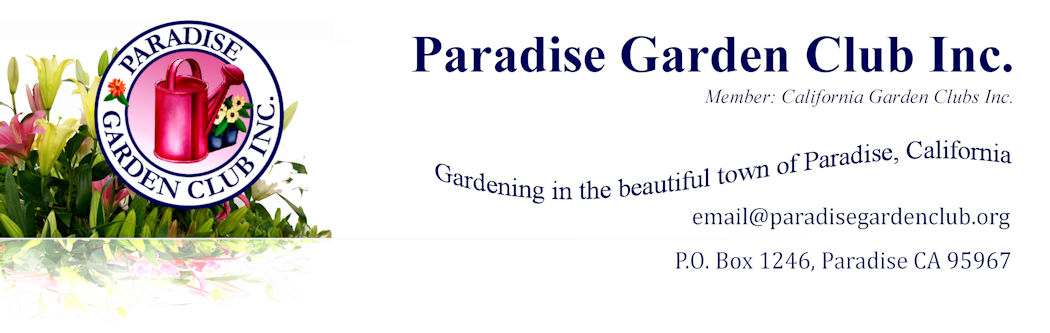 Paradise Garden Club Inc (Pgci): Welcome To The Garden - All About